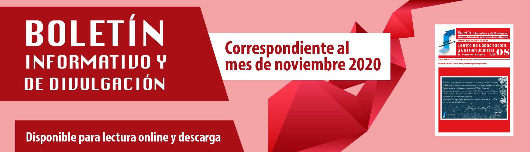 Boletín informativo noviembre