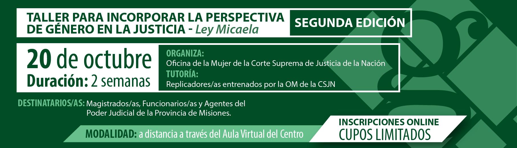 Taller para incorporar la perspectiva de género en la Justicia- Ley Micaela - SEGUNDA EDICIÓN